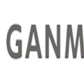GANMA! (ガンマ)