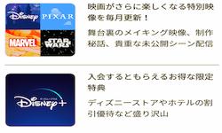 ディズニーDXアプリ(ディズニープラス)